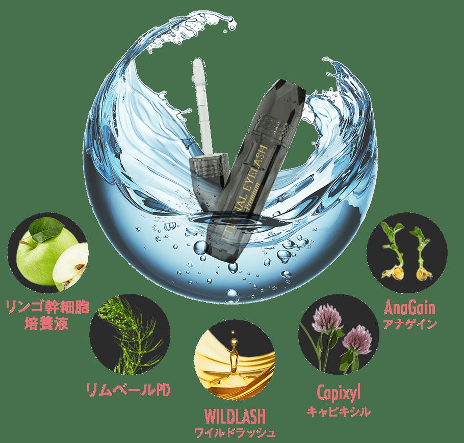 f:id:yakudacchi:20210203160454p:plain