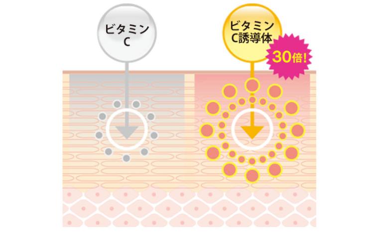 f:id:yakudacchi:20210205153408p:plain