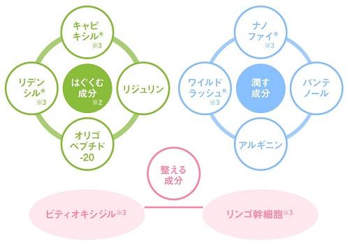 f:id:yakudacchi:20210210170711j:plain