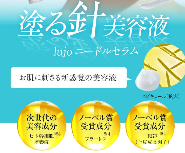 f:id:yakudacchi:20210305173651j:plain