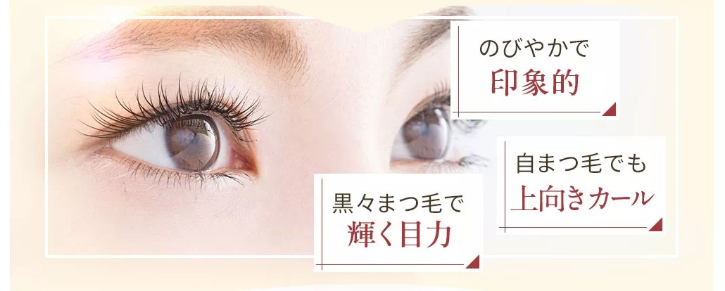 f:id:yakudacchi:20210331143920j:plain