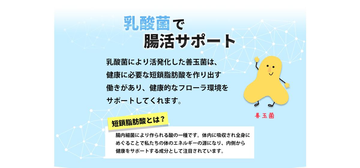 f:id:yakudacchi:20210401141743j:plain