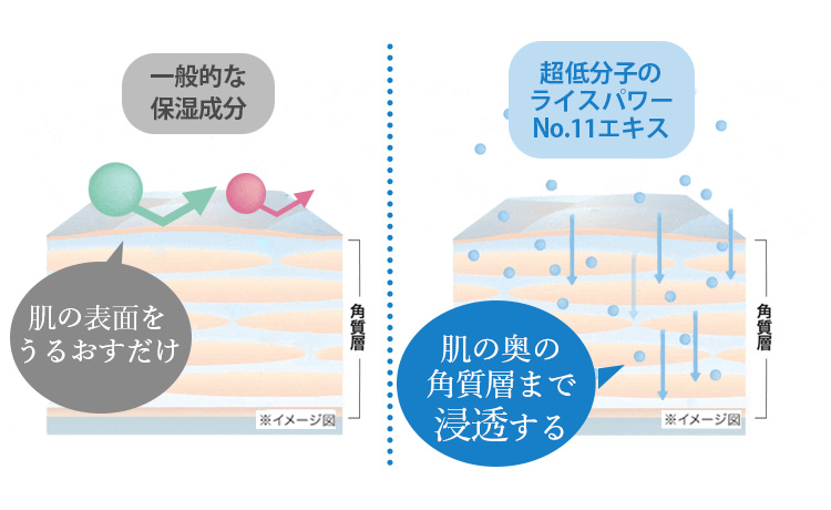 f:id:yakudacchi:20210415174031j:plain