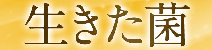 f:id:yakudacchi:20210423143109j:plain
