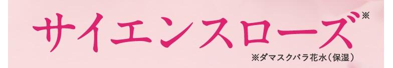 f:id:yakudacchi:20210510151826j:plain
