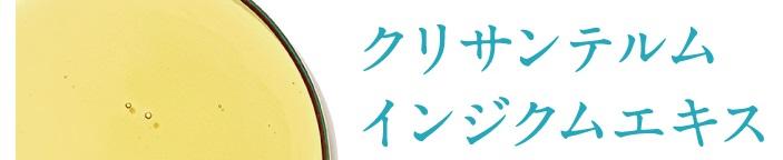 f:id:yakudacchi:20210510151841j:plain