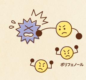 f:id:yakudacchi:20210820145639p:plain