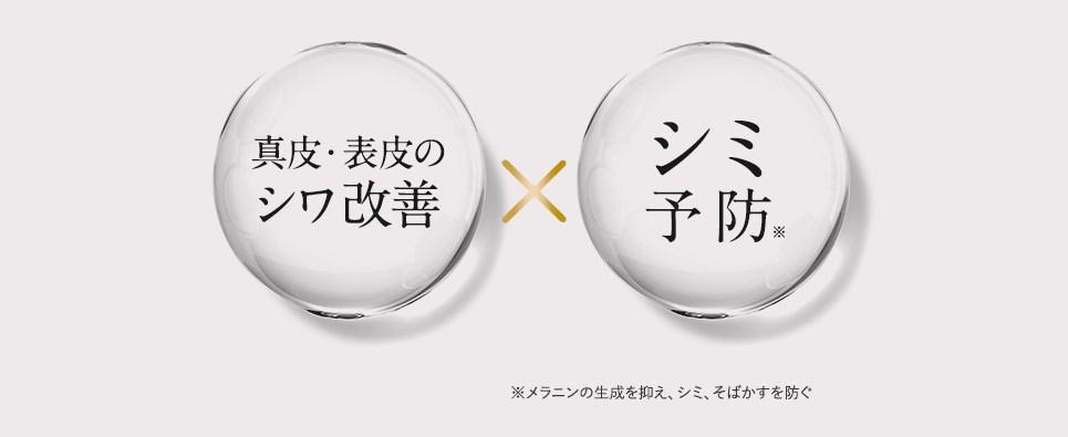 f:id:yakudacchi:20210906163350j:plain