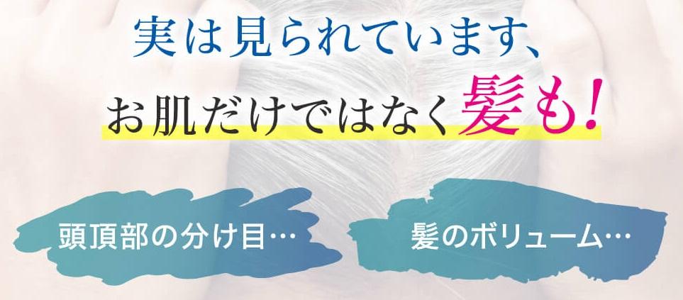 f:id:yakudacchi:20211014150523j:plain
