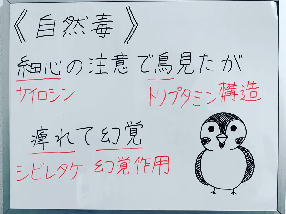 f:id:yakugakun:20191206113243j:plain