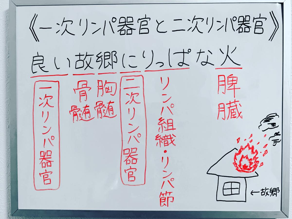f:id:yakugakun:20191216000716j:plain