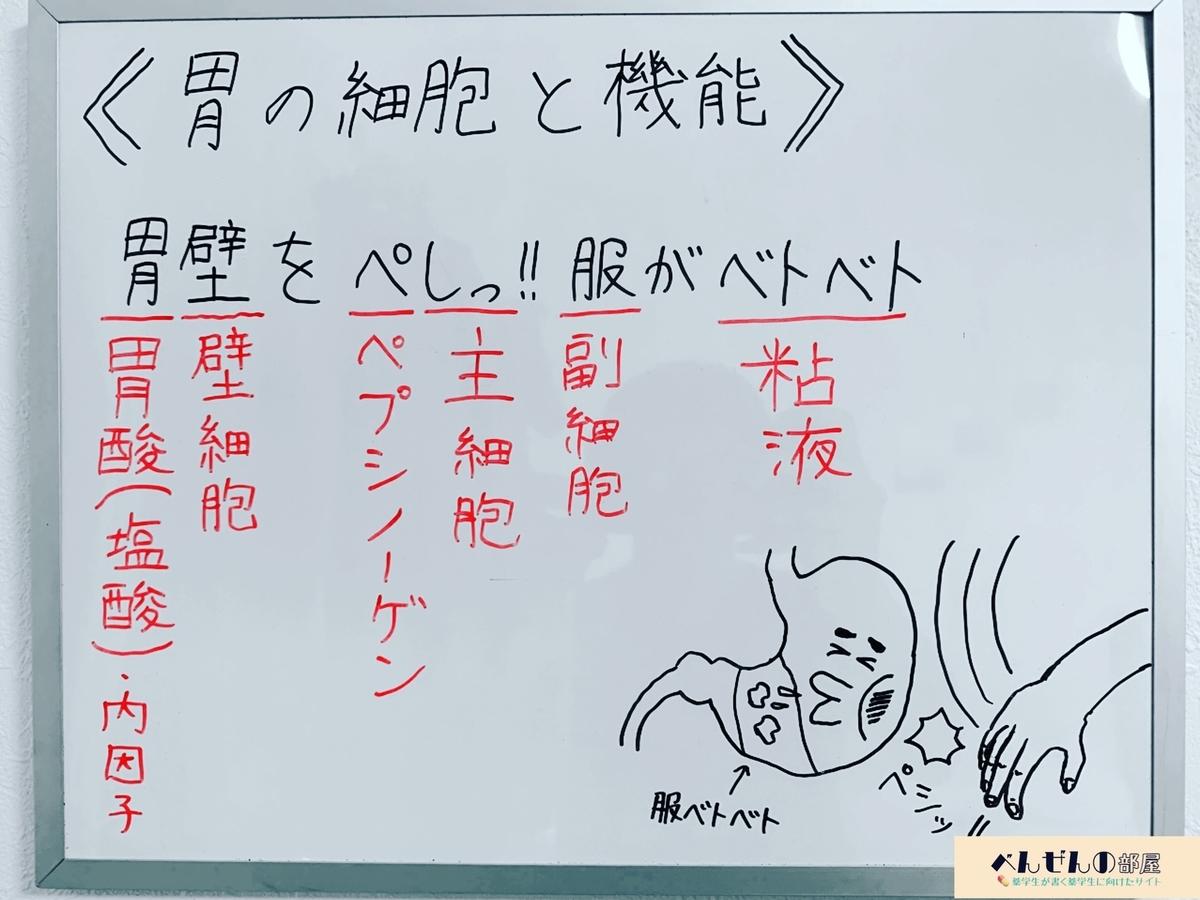 f:id:yakugakun:20200110004719j:plain