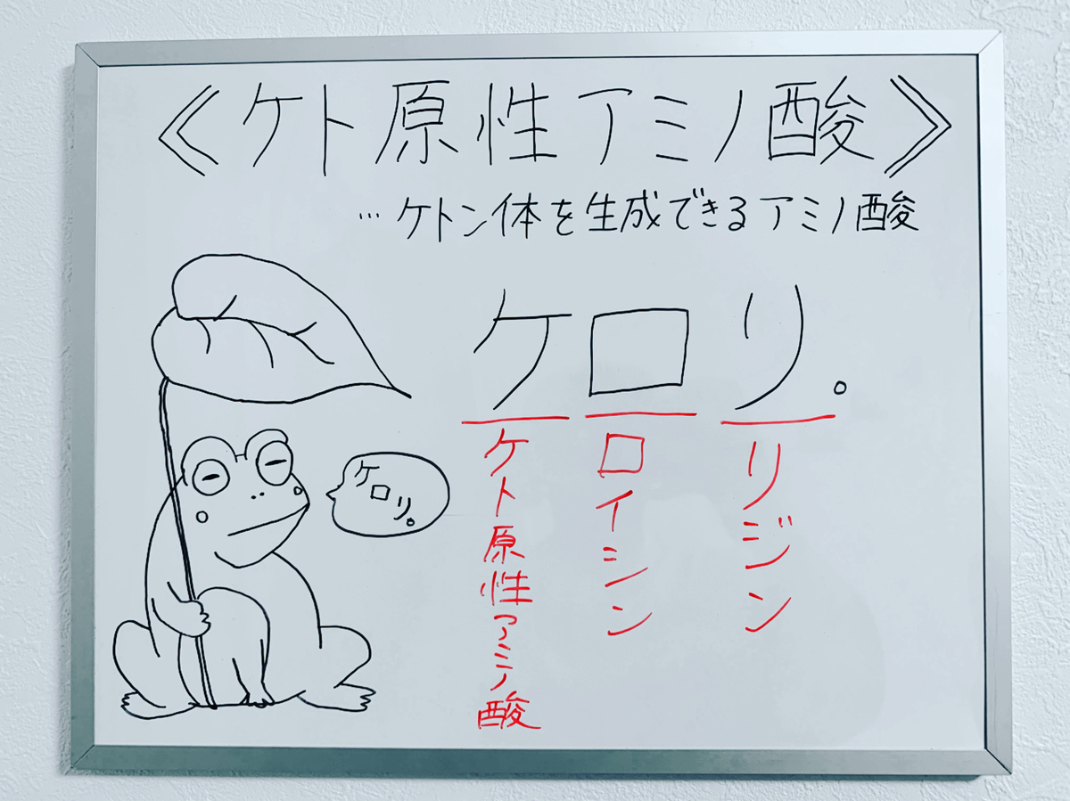 f:id:yakugakun:20200223205212j:plain