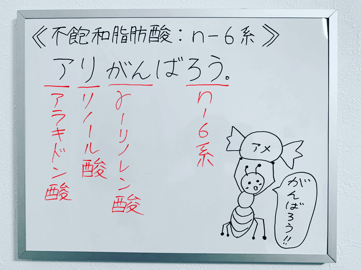 f:id:yakugakun:20200223223232j:plain