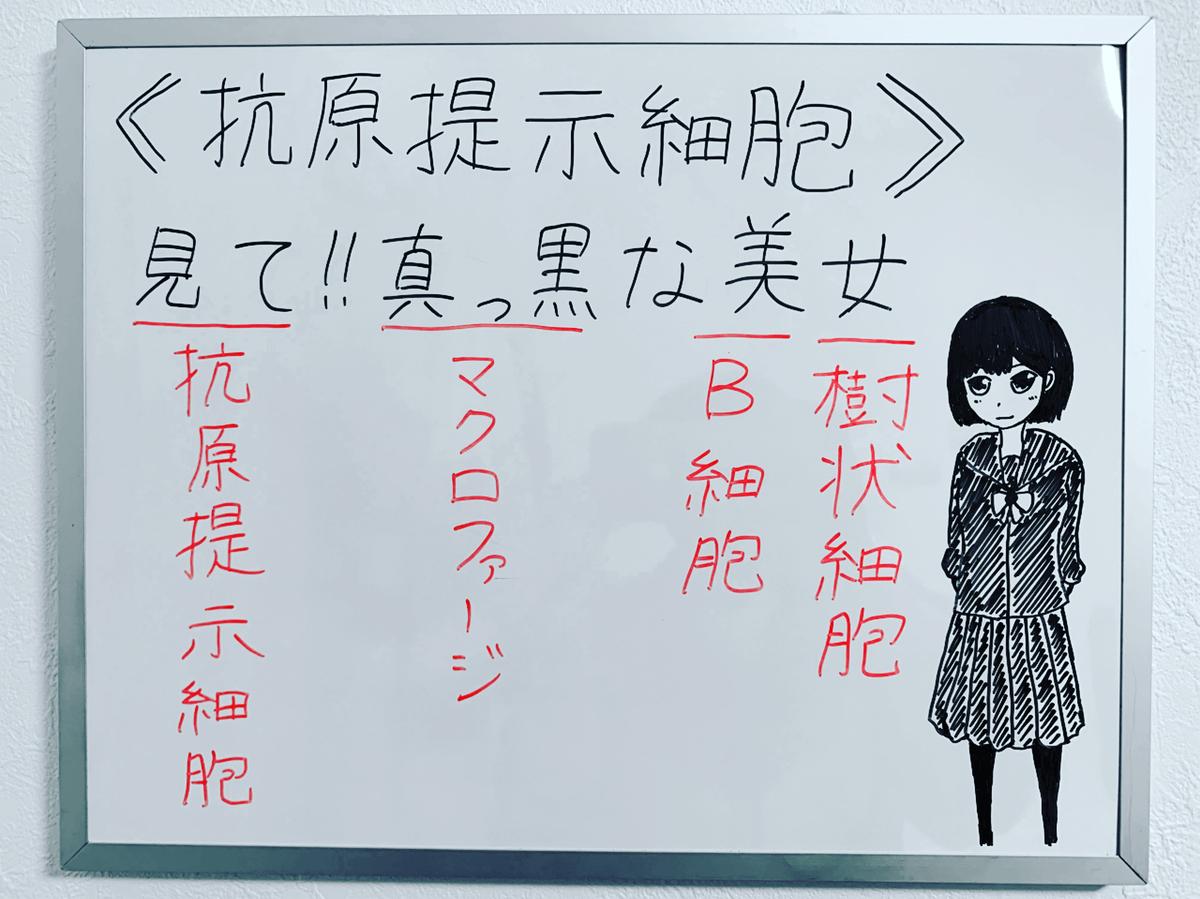 f:id:yakugakun:20200224082922j:plain