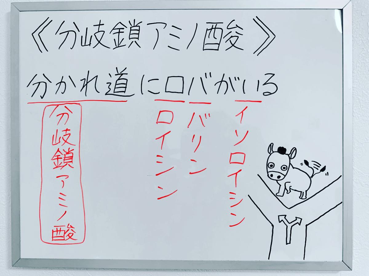 f:id:yakugakun:20200224124238j:plain