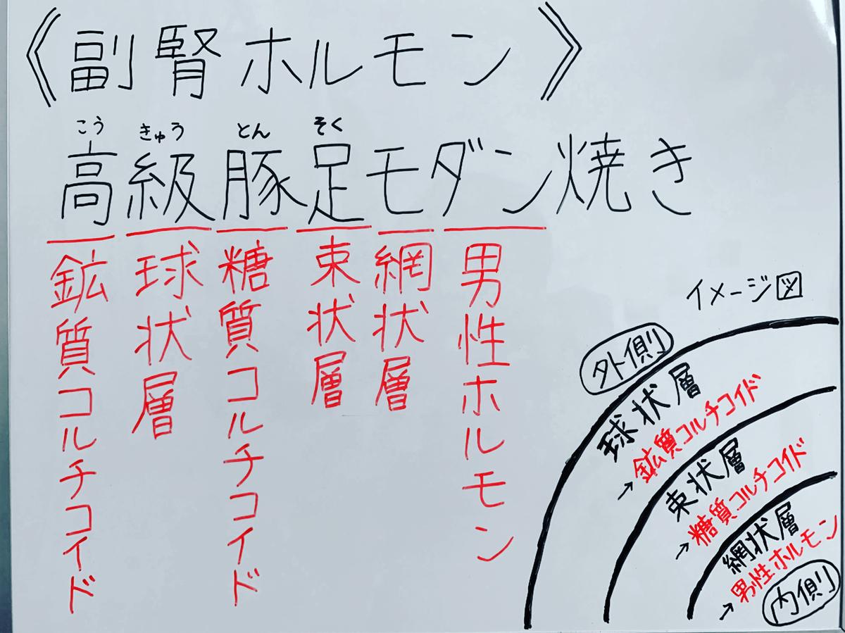 f:id:yakugakun:20200503141153j:plain