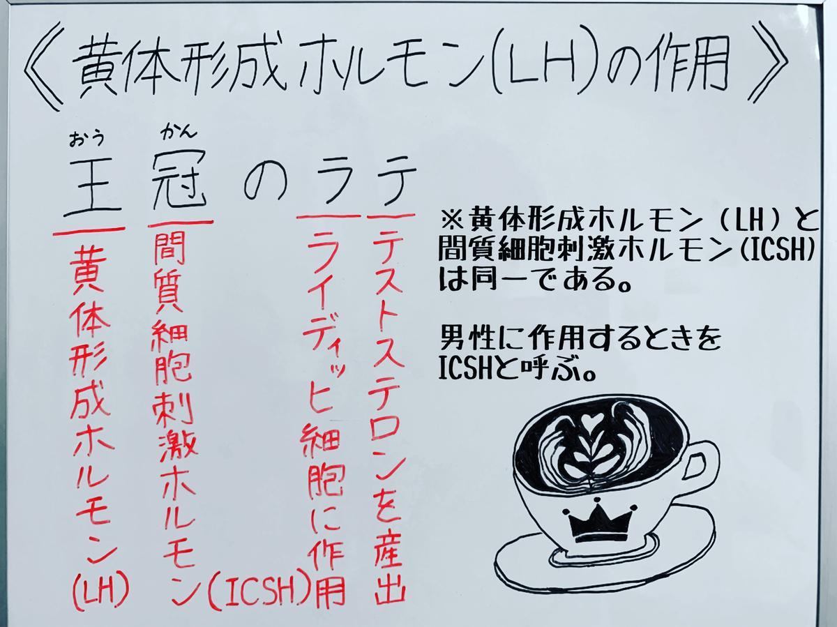 f:id:yakugakun:20200503142257j:plain