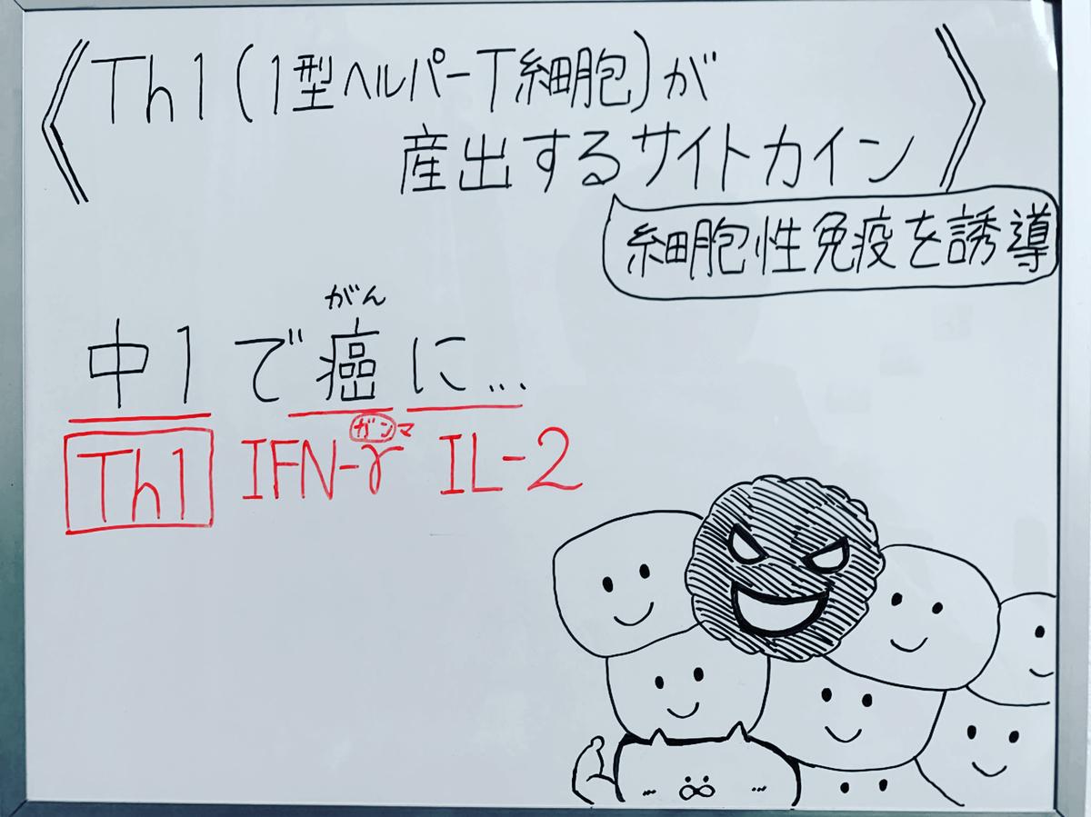 f:id:yakugakun:20200503142923j:plain