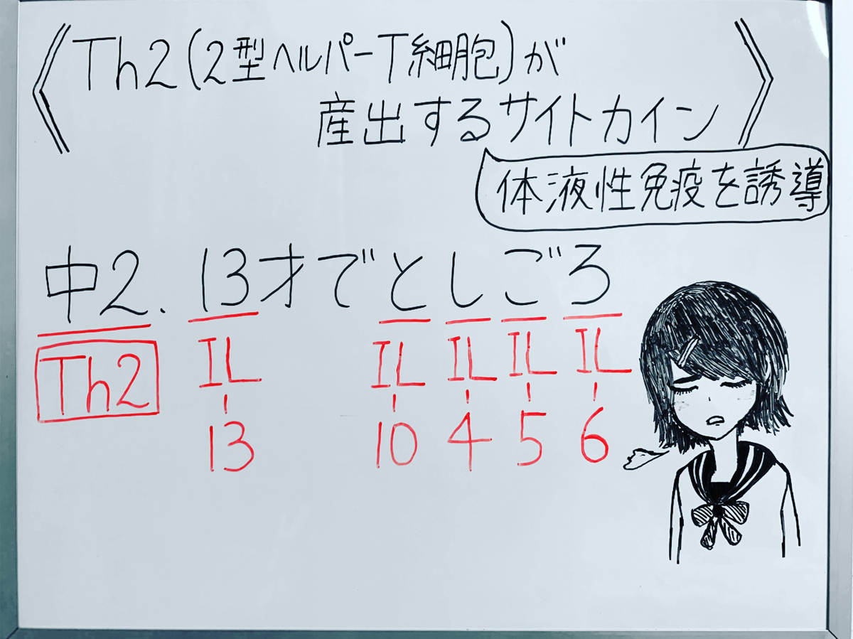 f:id:yakugakun:20200503143729j:plain