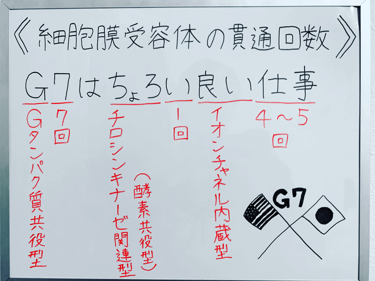 f:id:yakugakun:20200503145044j:plain