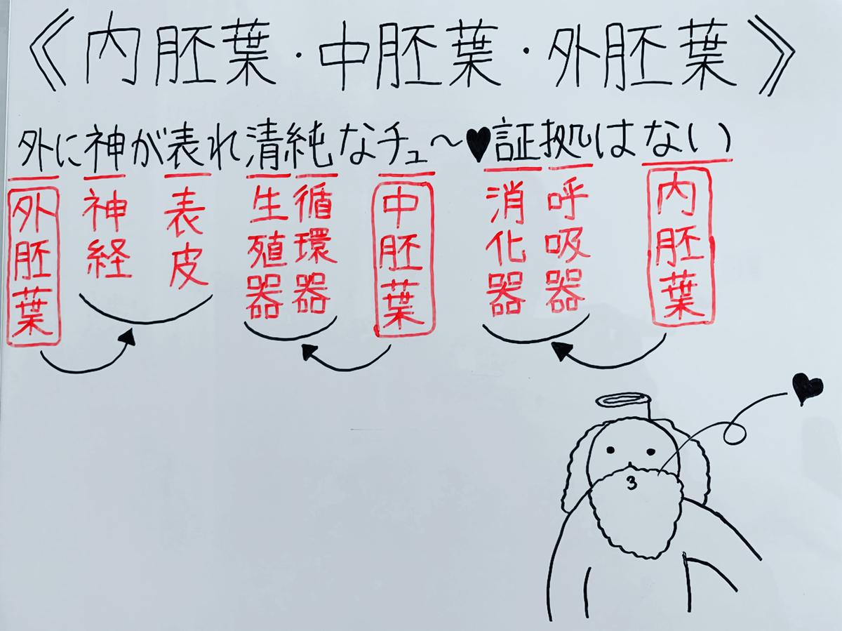 f:id:yakugakun:20200503153123j:plain