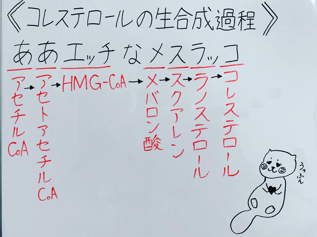 f:id:yakugakun:20200503153453j:plain