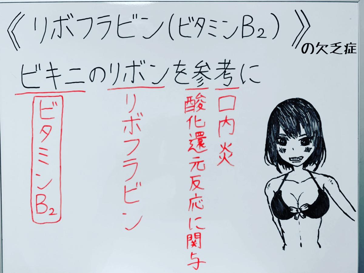 f:id:yakugakun:20200503155742j:plain