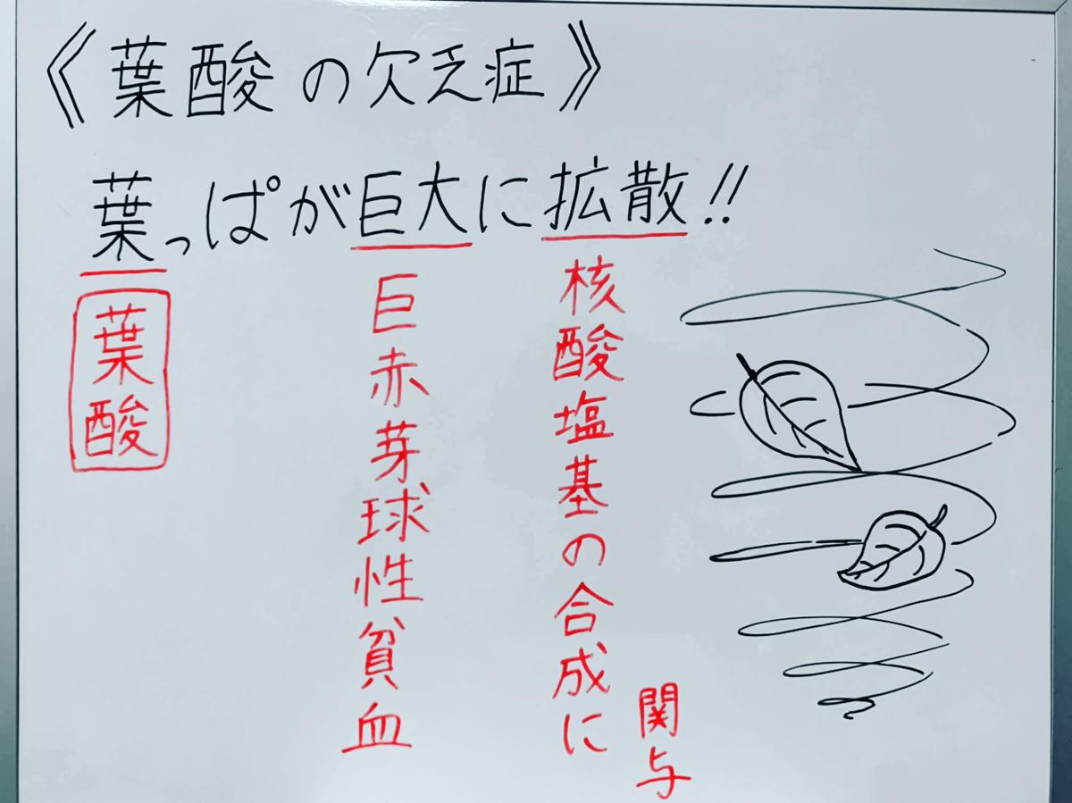 f:id:yakugakun:20200503165944j:plain