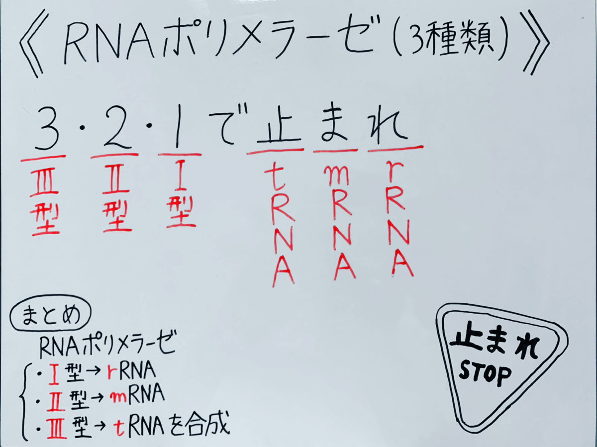 f:id:yakugakun:20200503171823j:plain