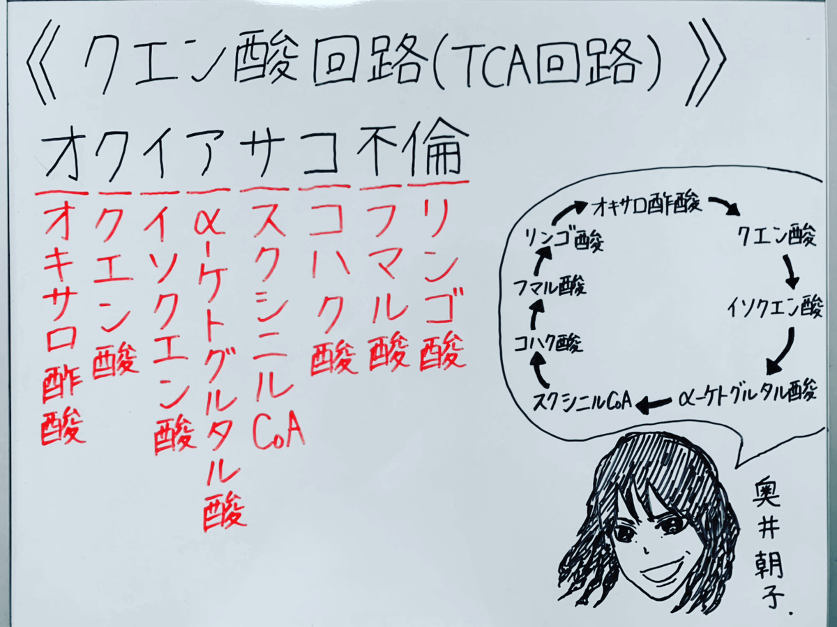 f:id:yakugakun:20200503173231j:plain