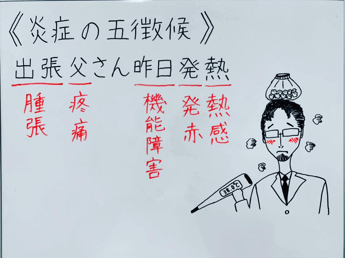 f:id:yakugakun:20200503174441j:plain