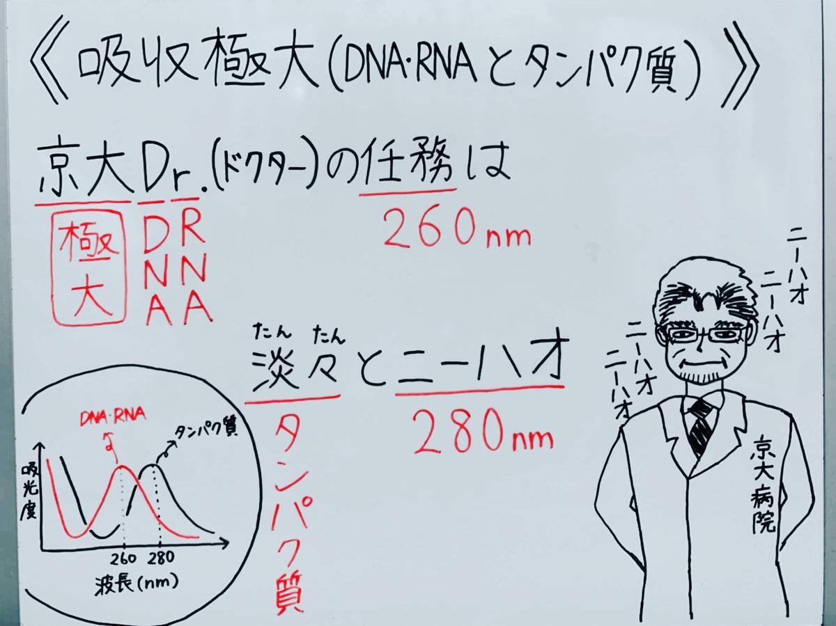 f:id:yakugakun:20200503181610j:plain