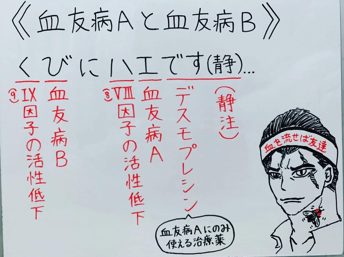 f:id:yakugakun:20200503202046j:plain