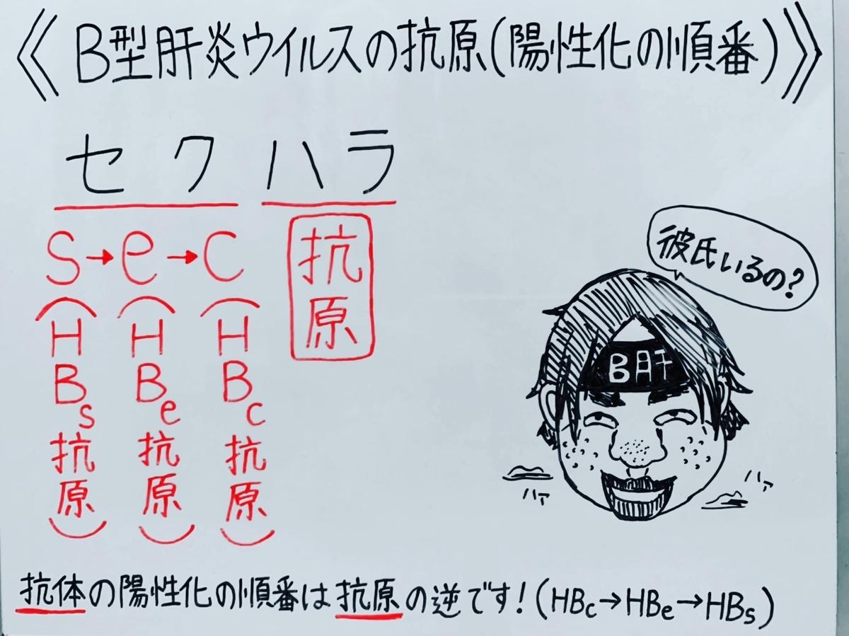 f:id:yakugakun:20200503202853j:plain