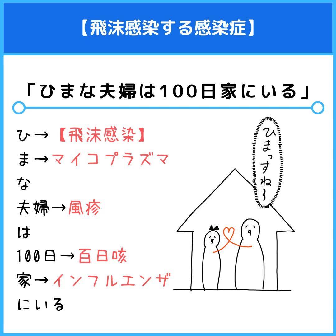 f:id:yakugakun:20201114235402j:plain