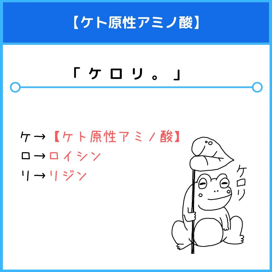 f:id:yakugakun:20201115092740j:plain