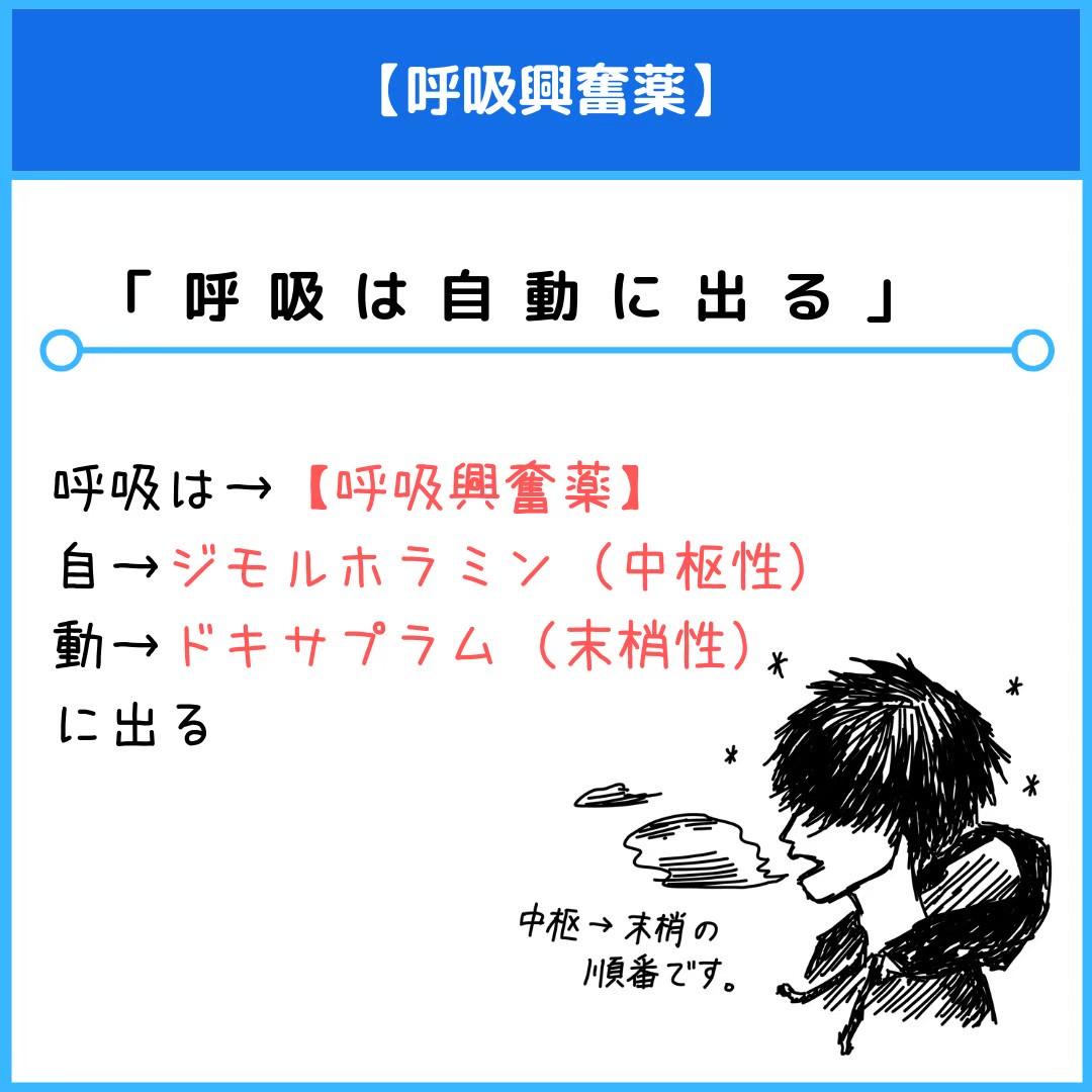 f:id:yakugakun:20201117005228j:plain