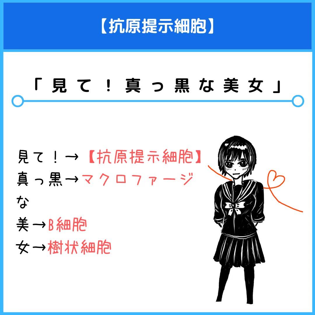 f:id:yakugakun:20201129211857j:plain