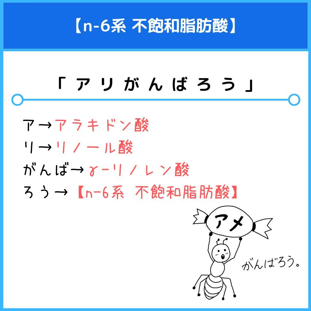 f:id:yakugakun:20201201103334j:plain