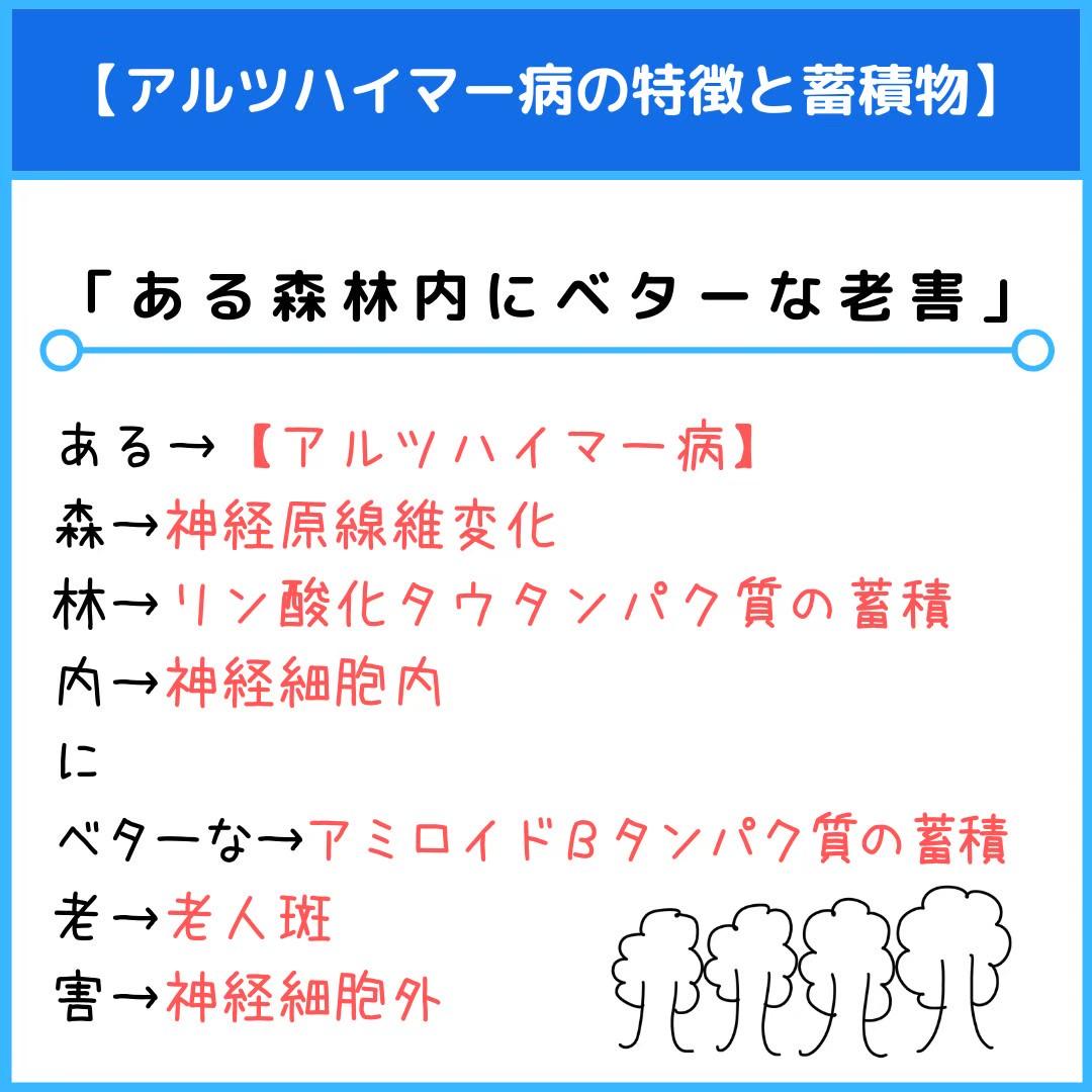 f:id:yakugakun:20201224213407j:plain