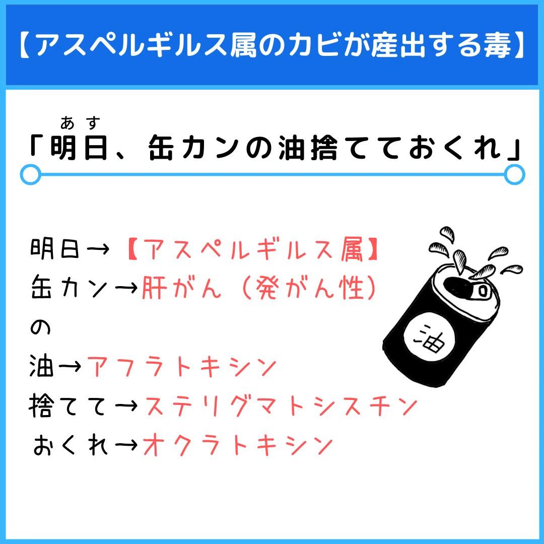 f:id:yakugakun:20210107155249j:plain