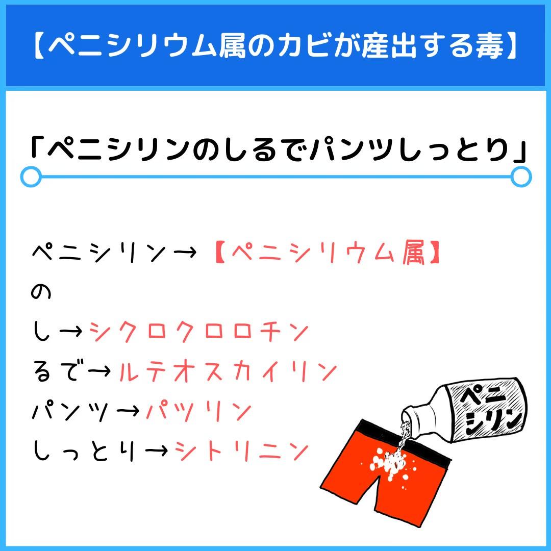 f:id:yakugakun:20210109230825j:plain