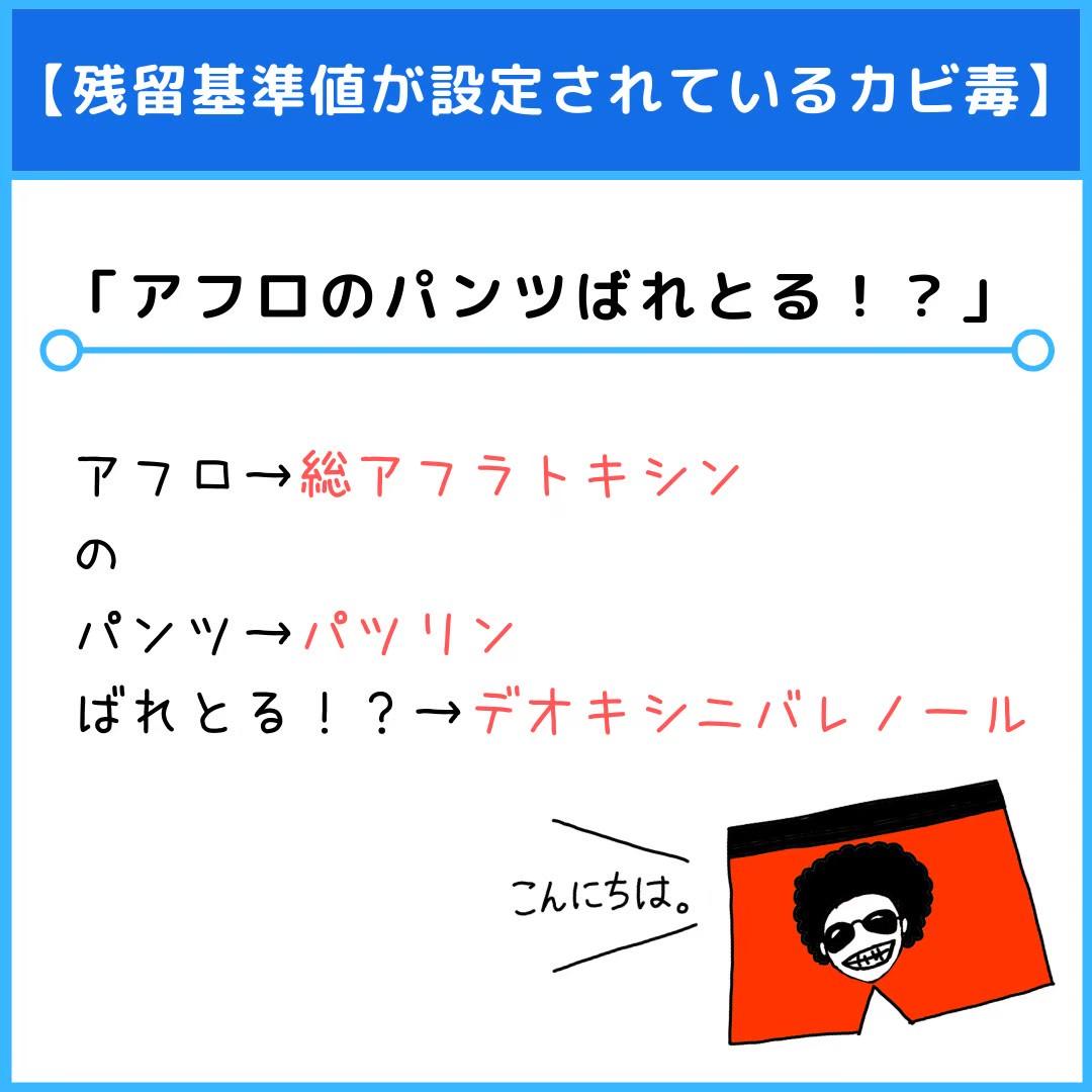f:id:yakugakun:20210110153600j:plain