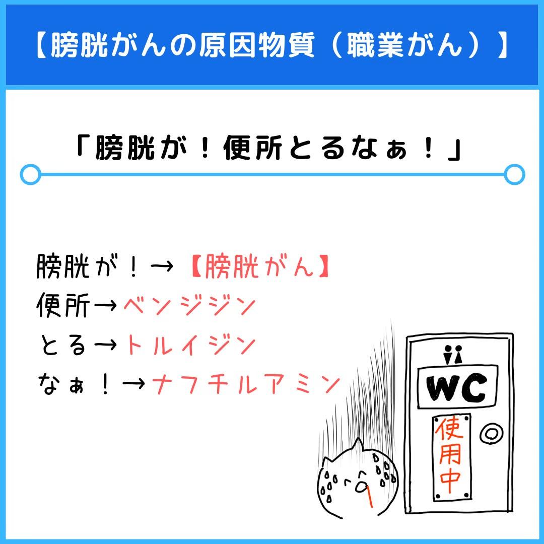 f:id:yakugakun:20210110154946j:plain