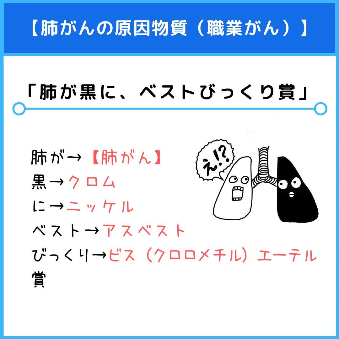 f:id:yakugakun:20210110162846j:plain