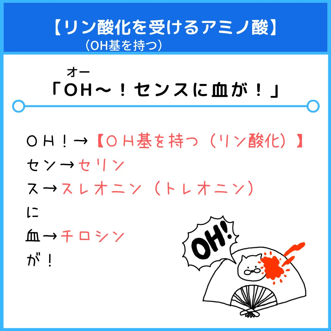 f:id:yakugakun:20210111174013j:plain