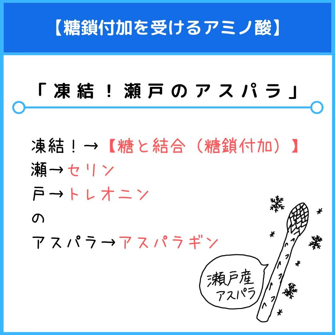 f:id:yakugakun:20210111174507j:plain