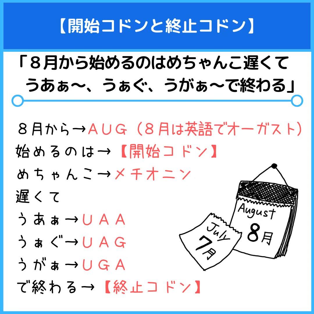 f:id:yakugakun:20210111174825j:plain