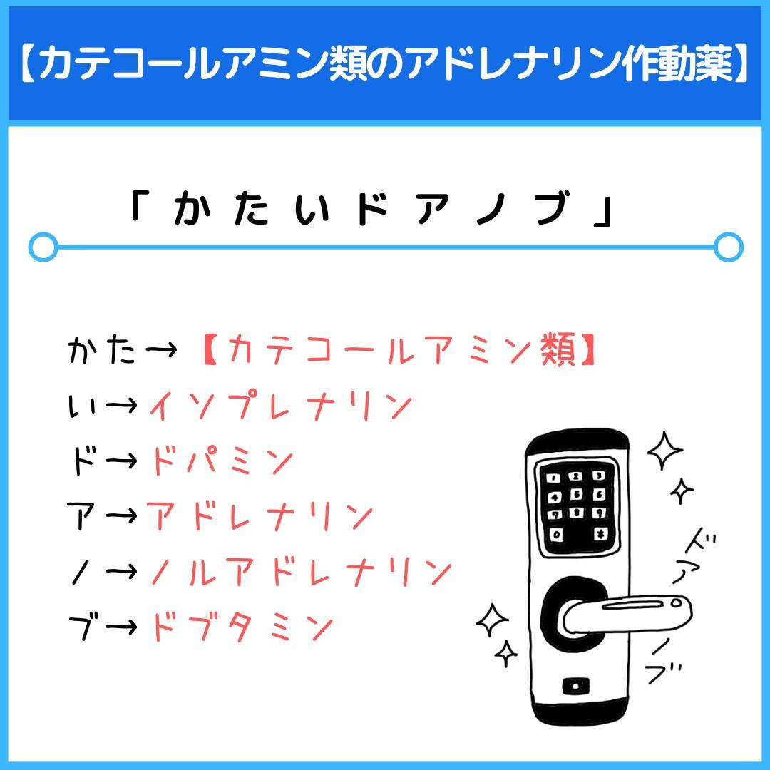f:id:yakugakun:20210117213606j:plain